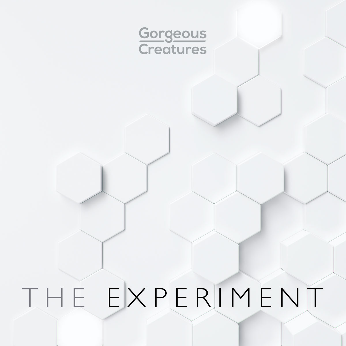 The Experiment by Gorgeous Creatures